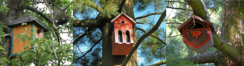 vogelhäuser selber bauen bücher